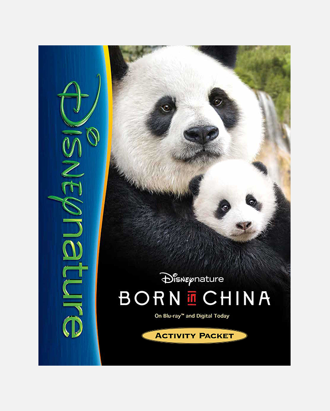 Disneynature Born In China Printable Activity